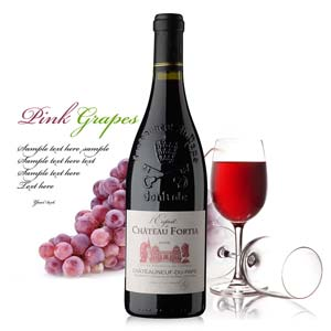 法国弗蒂亚城堡教皇新堡干红葡萄酒750ml
