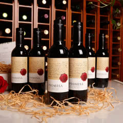 智利原瓶进口红酒 承诺迷你干红葡萄酒375ml(6瓶装)