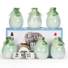 【送酒具】青梅江南米酒整箱礼盒500mlx6瓶甜酒果酒梅酒女士酒