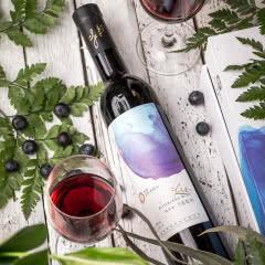 紫斐蓝莓酒果酒蓝莓红酒甜酒500ml单支 高颜值女生酒 蓝调蓝