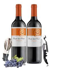 智利原瓶进口红酒 干露酒庄马代苏卡曼尼干红葡萄酒750ml*2